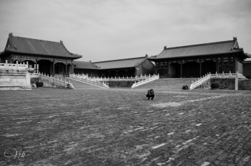 Taking Photos at the Forbidden City