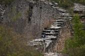 Great Wall Wildlife