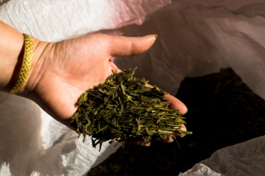 Dried Dragonwell Tea